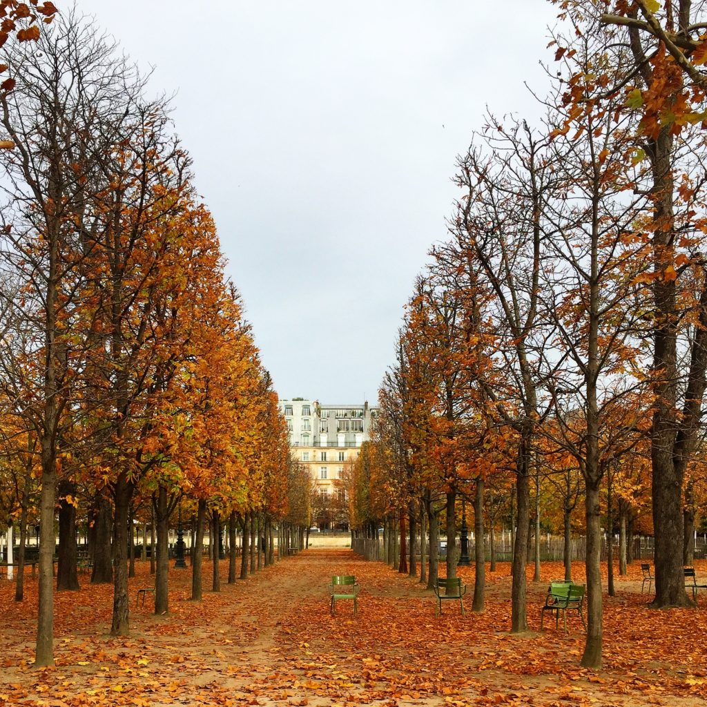 Paris Tuileries autumn