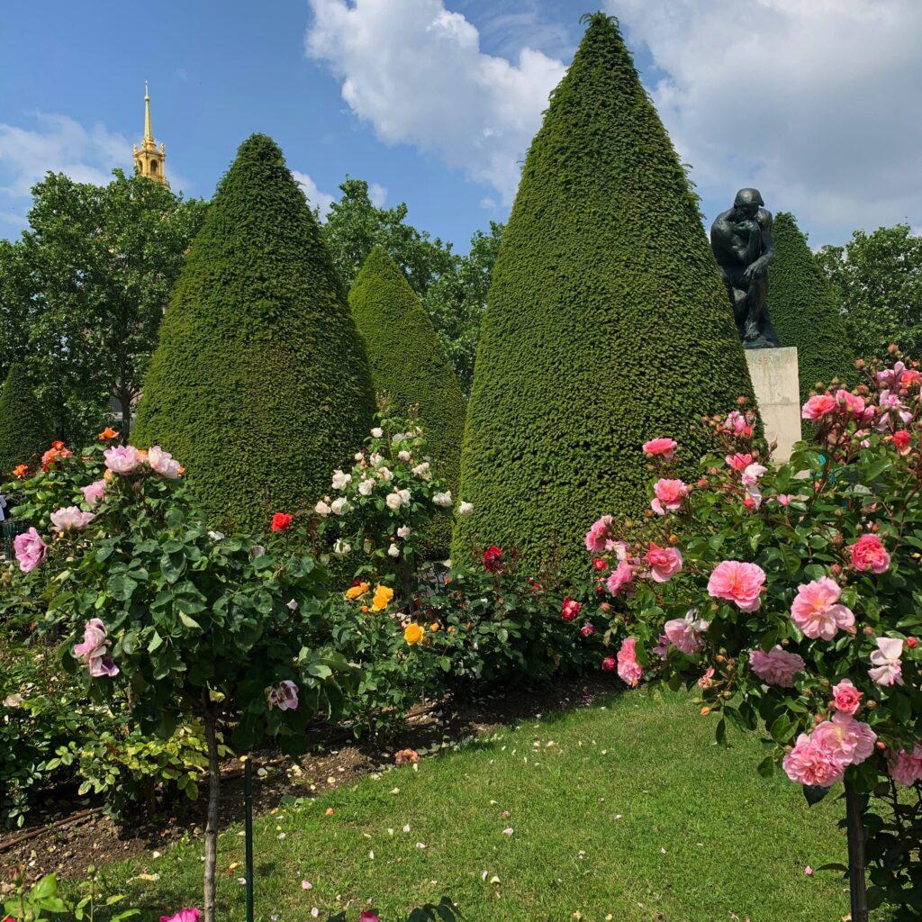 Musée Rodin roses