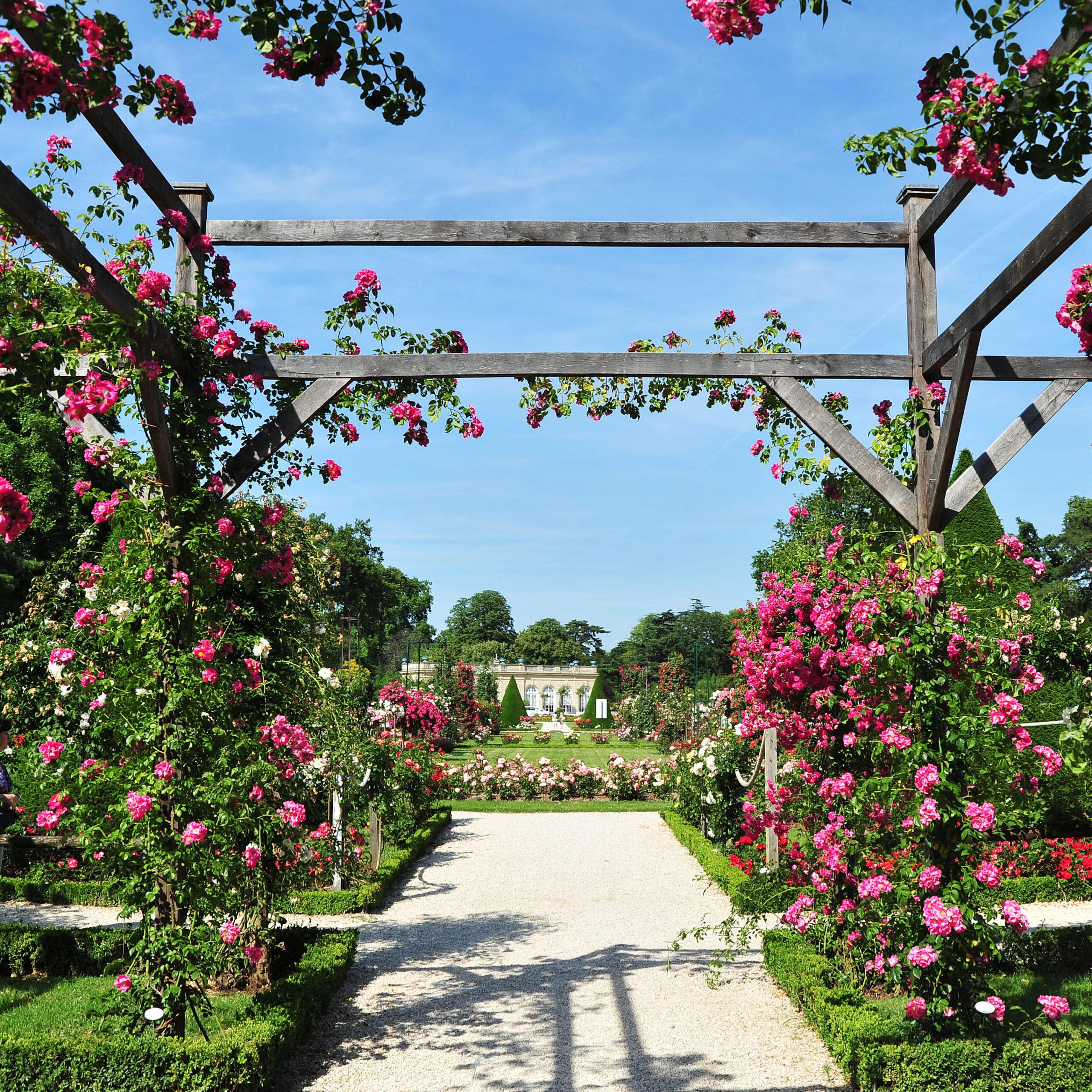 Bois de Boulogne, Parc de Bagatelle, rose garden and orangery. Bagatelle Parc, Paris, France.
