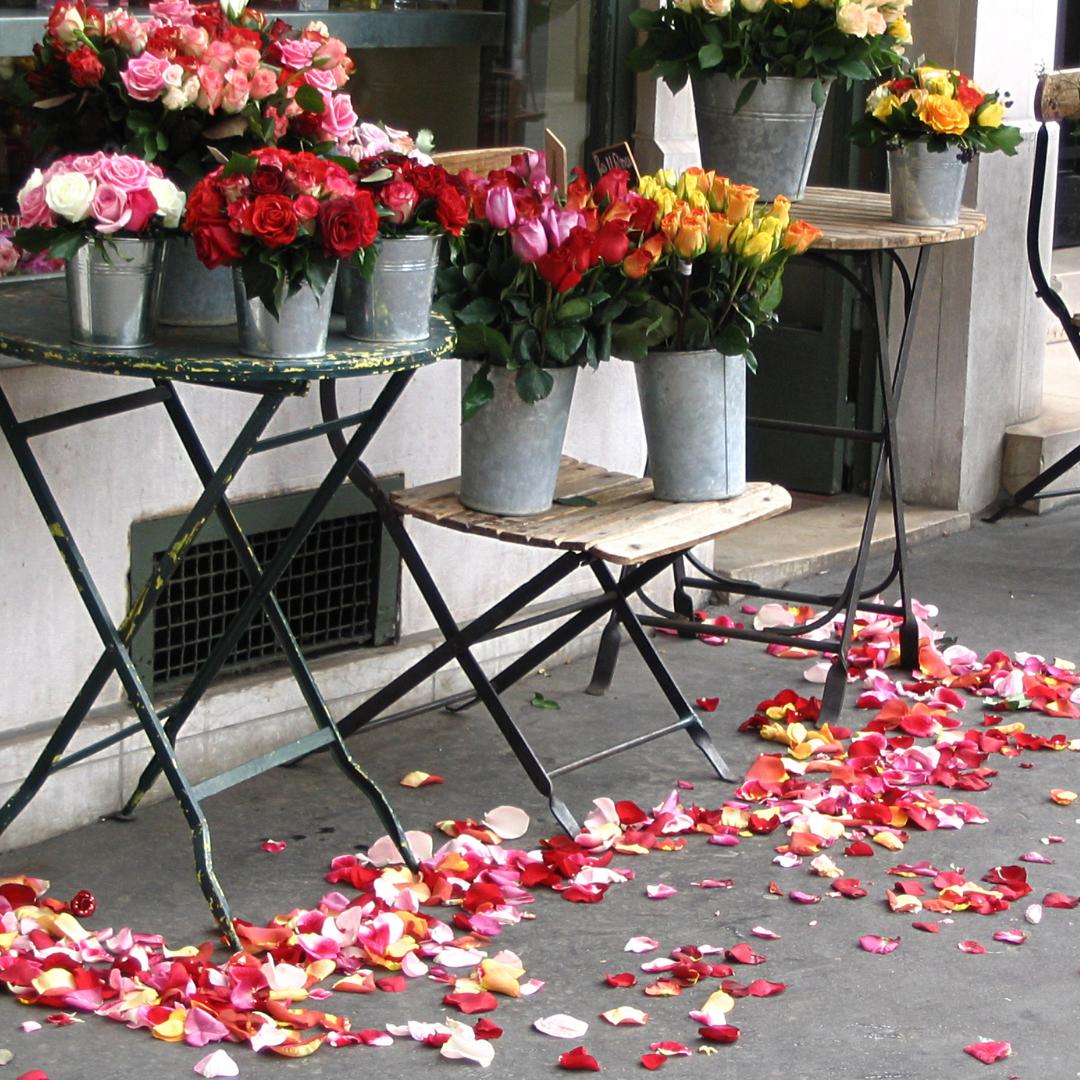 Roses-on-Footpath