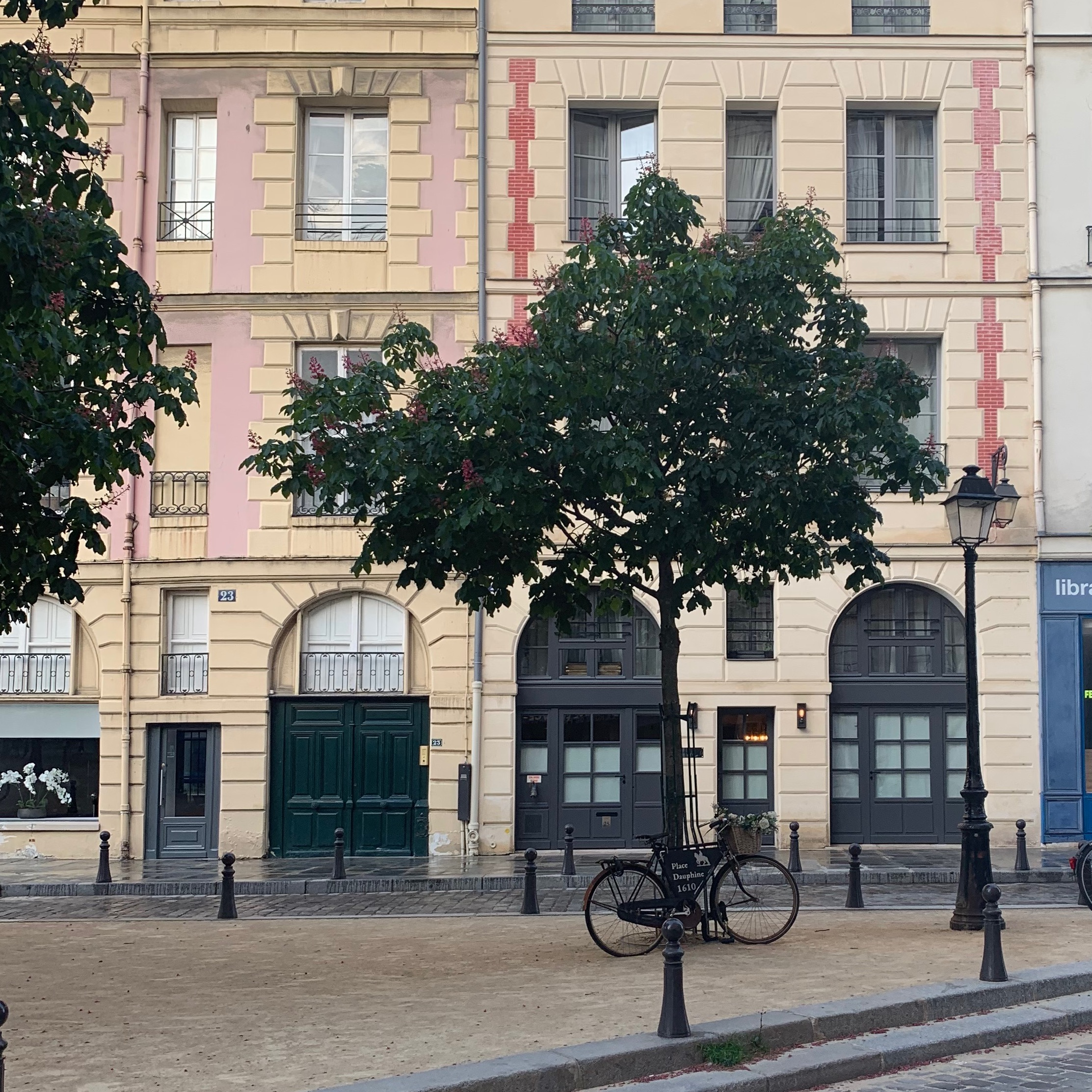 Place-Dauphine-pink